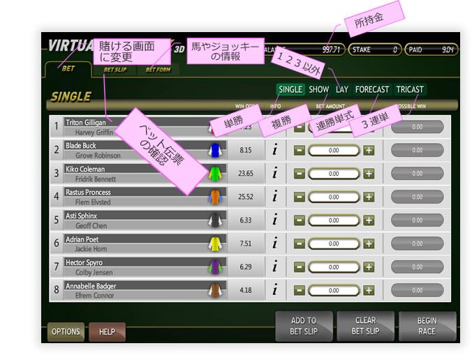 virtualrace01