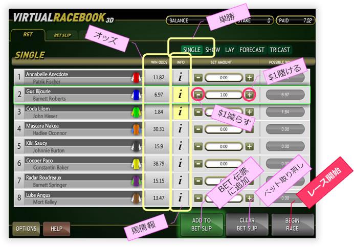 virtualrace02