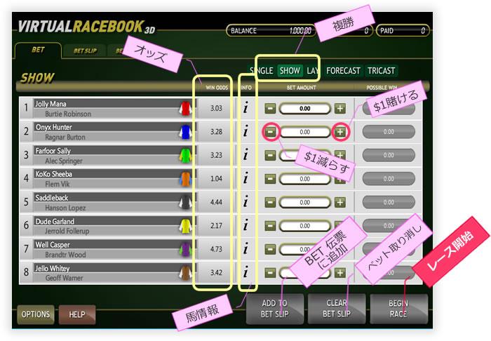 virtualrace03