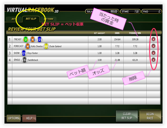 virtualrace07