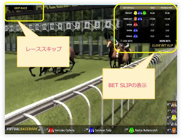 virtualrace12